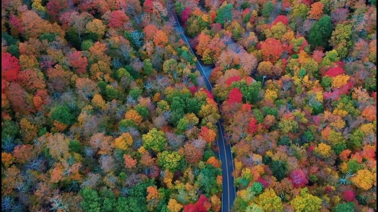 Some of the Best Spots in the US to See Fall Colors