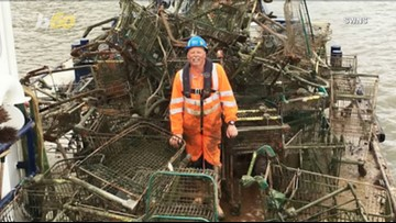 Shopping Cart Salvage! River Cleaners Dredge Up About 70 Shopping Carts from River in One Day