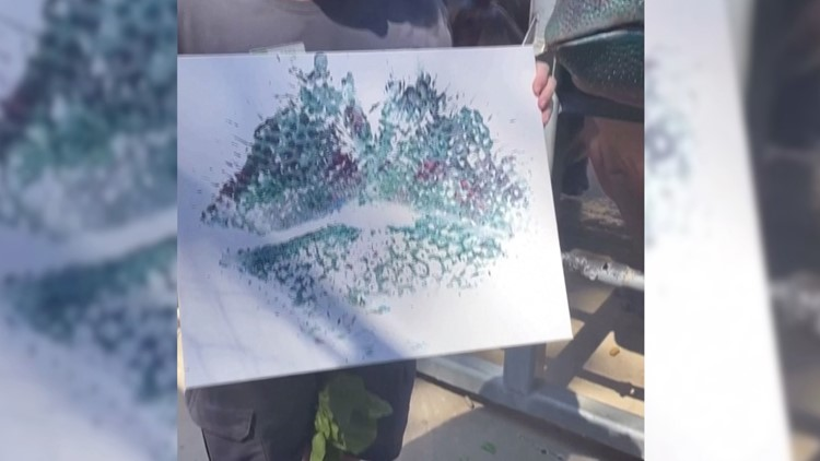 Wild Artwork! Hippos at Texas Zoo Channel Their Inner Bob Ross To Create Works of Art!