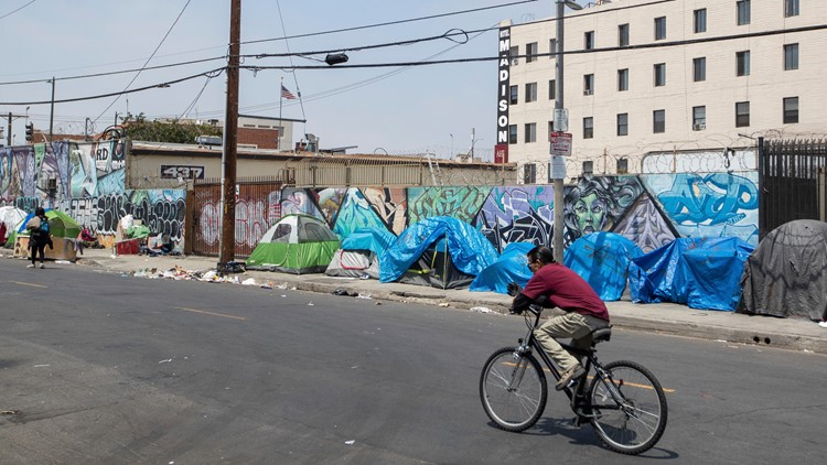 2019 Los Angeles Homeless Count and SRO Housing Options