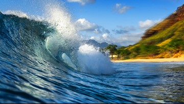 Alaska Airlines is discounting flights to Hawaii based on wave size
