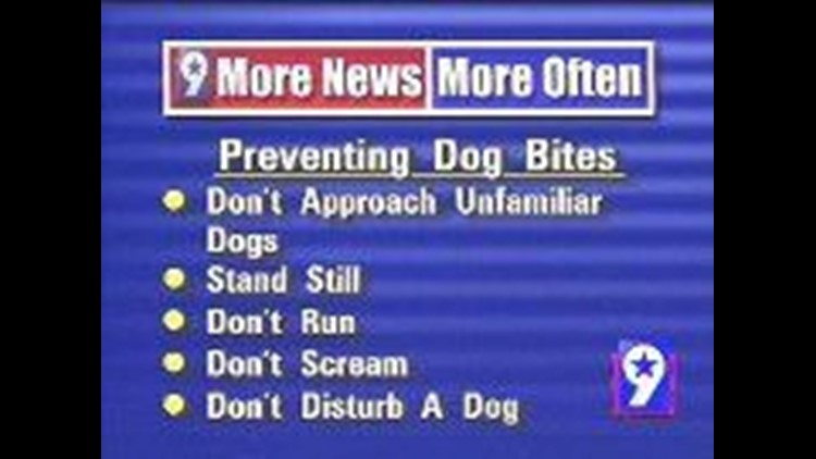 Dog trainers warn be mindful when it comes to your pets
