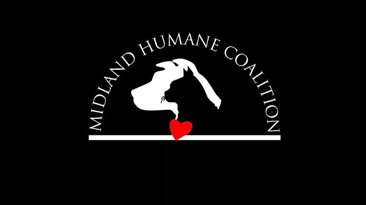 Midland Humane Coalition asking for donations for new Wellness and Treatment Center