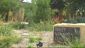 Sibley Nature Center camps teaches children the wonders of nature