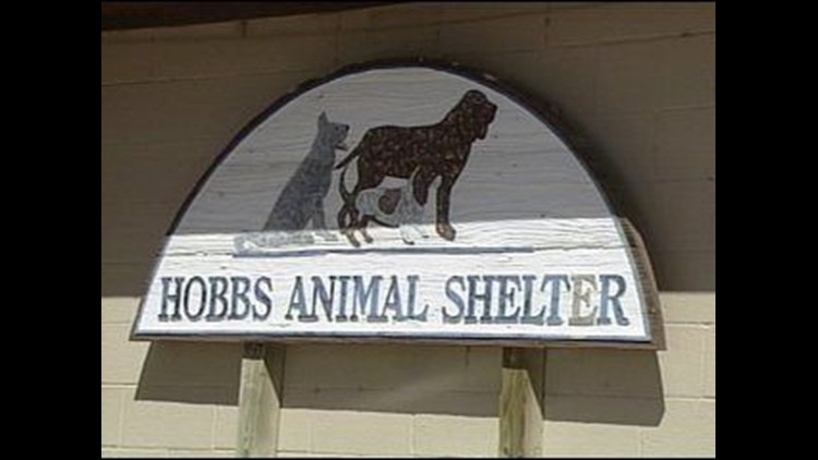 Help is On the Way for Animal Shelter in Hobbs