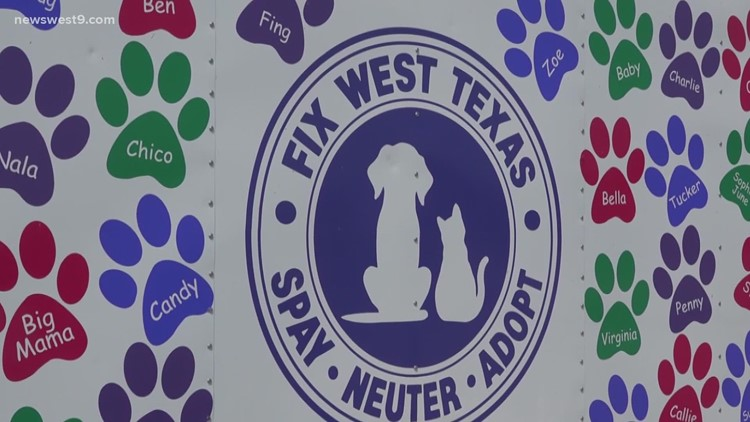 Local pet non-profits, city of Midland hopeful for future of new animal shelter and pet voucher program