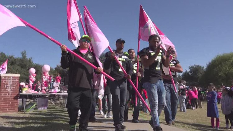 Pink the Park event honors fighters, survivors of breast cancer