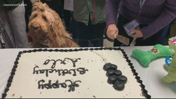 Permian HS throws 'paw'ty for therapy dog