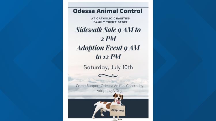 Odessa Animal Control holds adoption event, sidewalk sale