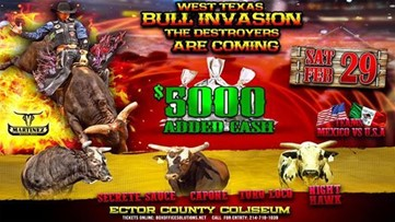 The West Texas Bull Invasion to take Odessa by storm