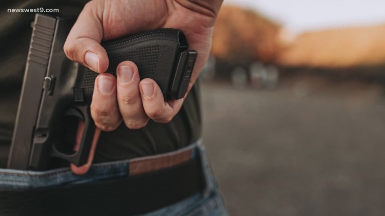 License to carry instructors raise concerns over constitutional carry bill