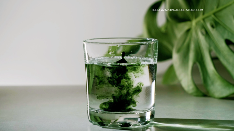Social media users are drinking chlorophyll as a popular new trend