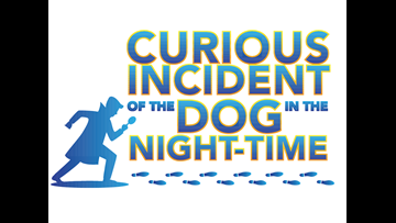 Kirsten's Korner: Our review of 'The Curious Incident of the Dog in the Night-Time' at Midland Community Theatre