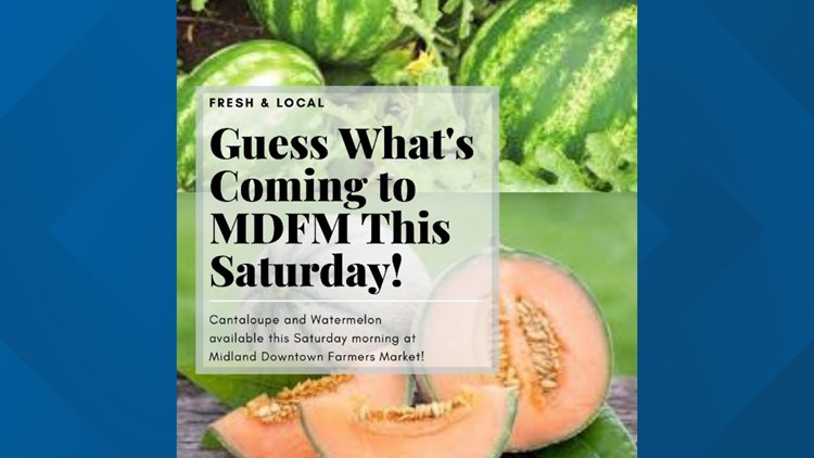 New foods headed to the MDFM