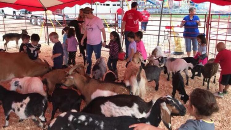 Howard County Fair kicks off Friday