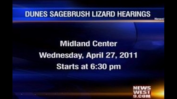 Rally Being Held Over Sagebrush Lizard Being Added to Endangered Species List