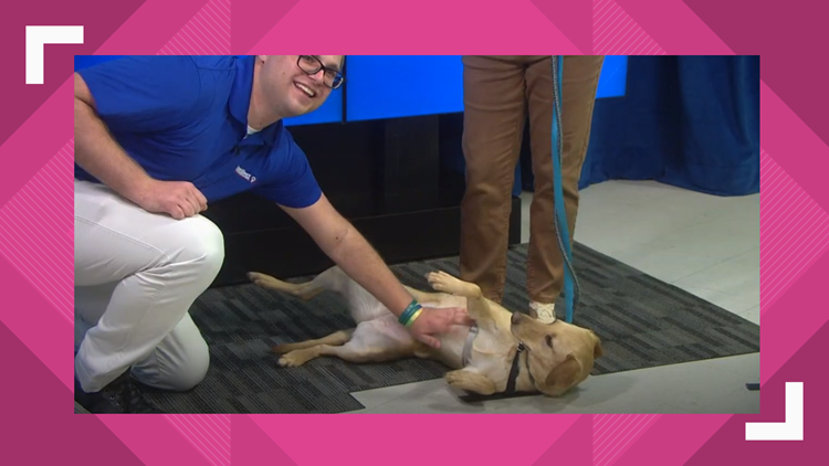 Jane visits the studio for Pet of the Week