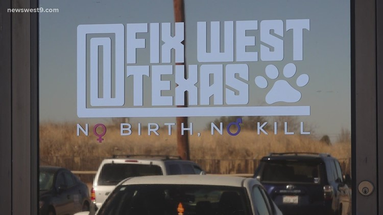 Fix West Texas accepting limited walk-in pets for neutering, flea/tick treatment