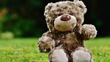 Stonegate Mothers of Preschoolers organize teddy bear hunt