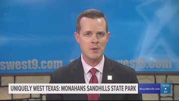 Uniquely West Texas: Monahans Sandhills State Park offers more than just sand