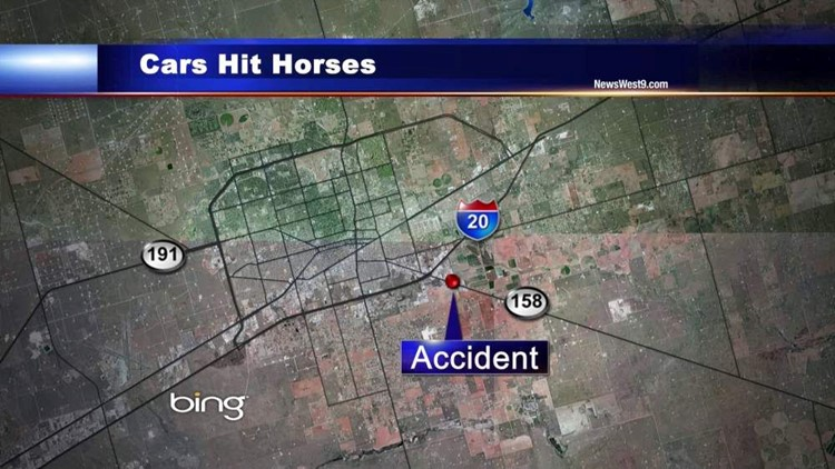 Horse Hit by Two Cars in Midland County