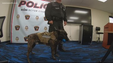 ECISD investing in K-9 unit trained to detect weapons, explosives