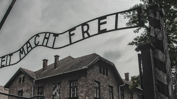 Texas School Leader Tells Teachers to 'Balance' Libraries With Opposing Holocaust Books