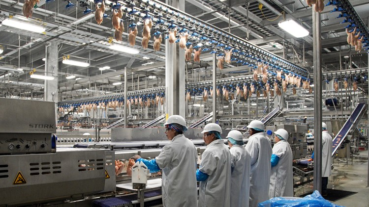 Tyson, Perdue to pay $35M to settle with chicken farmers