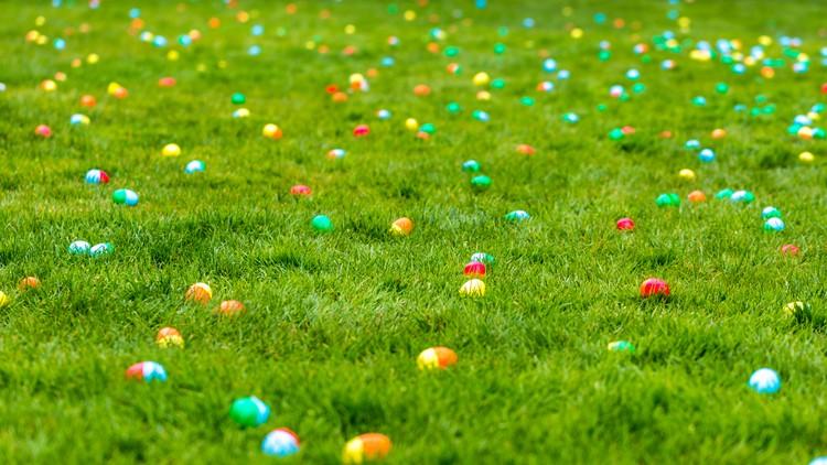 Permian Basin Animal Advocates holding Easter fundraiser